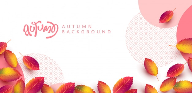 Autumn leaves background. seasonal lettering. promotion sale banner of autumn season.