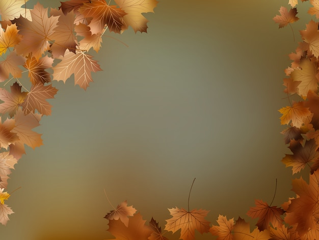 Autumn leaves background template.