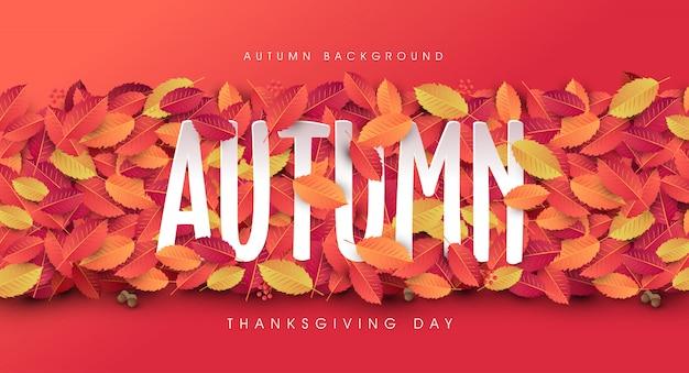 Осенние листья фон. день благодарения