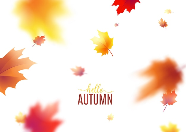 Autumn leaves background with blur effect.