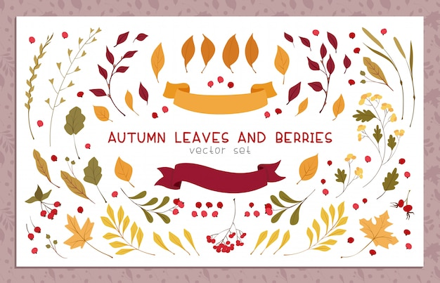 Autumn leaves and berries flat vector illustrations set
