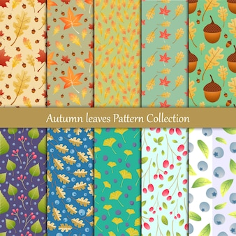 Autumn leaves and berry seamless pattern collection