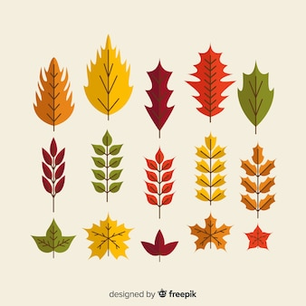 Autumn leaves collection flat style
