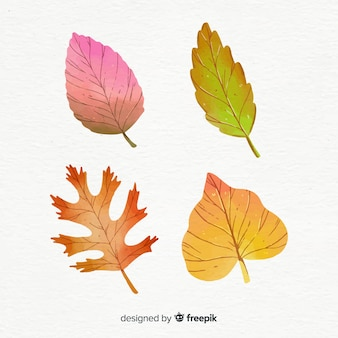 Autumn leaves collection watercolor style