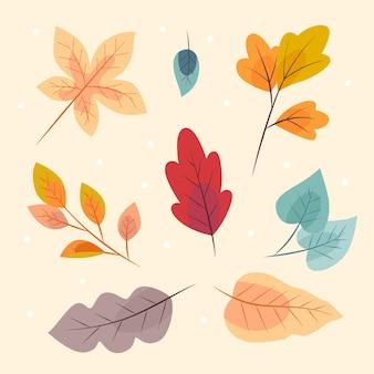 Collezione di foglie d'autunno