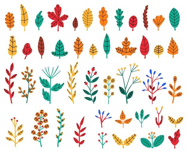 紅葉。秋の森の葉と果実、居心地の良い落書き花のハーブ、ワイルドフラワー、植物の木の葉のイラストセット。秋の森、紅葉、紅葉