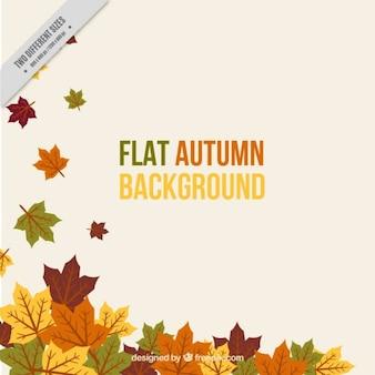Foglie di autunno che cade, sfondo
