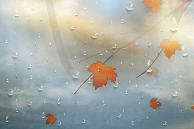 雨のガラスの紅葉。