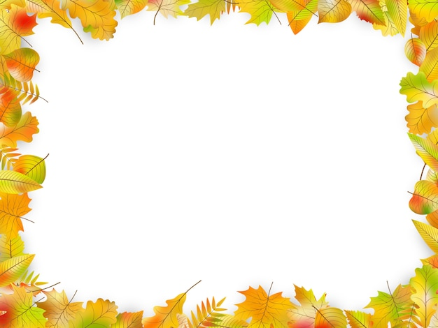 Autumn leaves frame isolated on white.