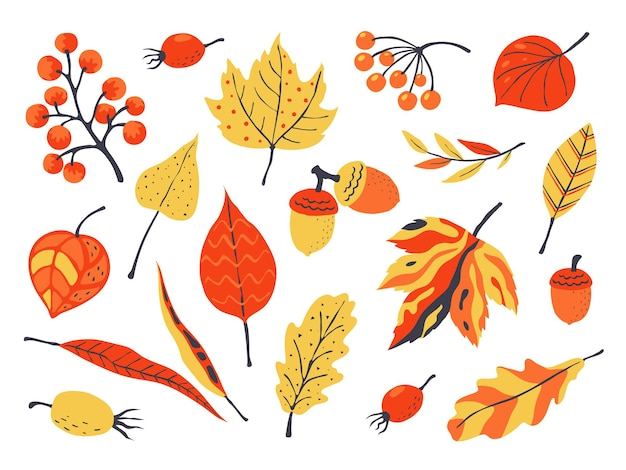 Осенние листья иллюстрации