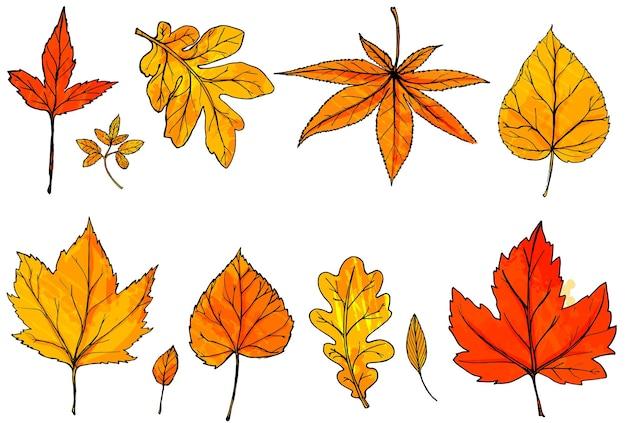 Осенние листья, изолированные на белом фоне. ручной обращается оранжевый и красный векторный лист. элементы дизайна осенних спецпредложений, открытки