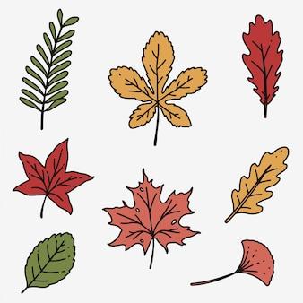 Autumn leaves isolated set