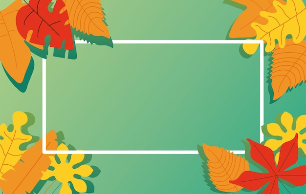 Autumn leaves nature foliage pattern background in square frame