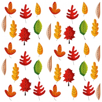 Autumn leaves pattern background isolated. vector illustration