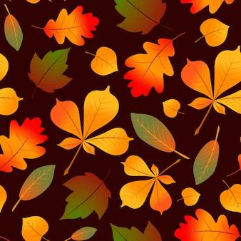 Осенний образец листьев.