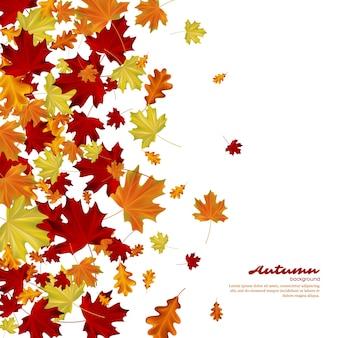 Foglie di autunno su sfondo bianco. illustrazione vettoriale autunnale.