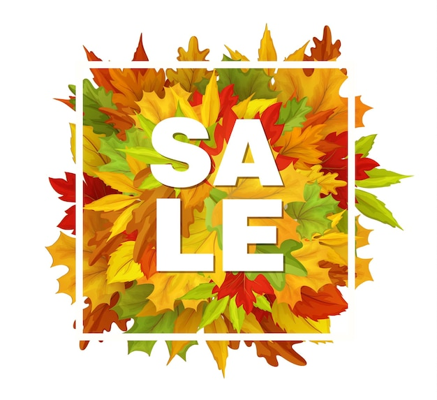 Autumn leaves in white square frame, maple oak, autumn banner, poster, placard template design.