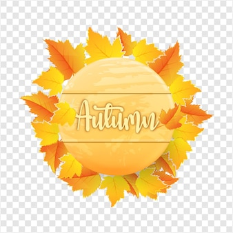 Autumn leaves with wooden board on transparent background