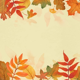 Autumn leaves yellow background vector