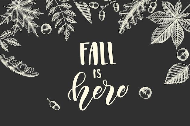 Осенняя надпись каллиграфии фраза -fall is here. надпись. эскиз. рисованной каракули листья клен, береза, каштан, желудь, ясень, дуб. гравировка иллюстрации.