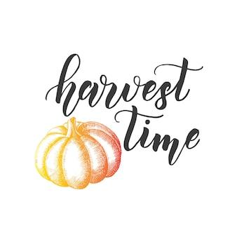 秋のレタリング書道フレーズ-収穫時期。カボチャと手作りの引用符が白で隔離の招待状。スケッチ、ベクトルデザイン