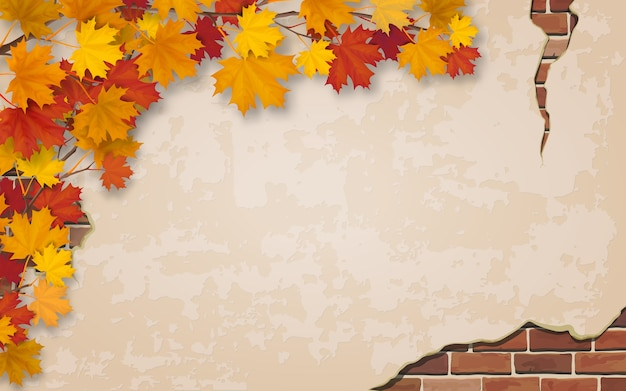 レンガ組積造と風化した壁の背景に秋のカエデの枝。しっくいの壁とひびのレンガ。