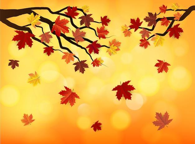 Autumn maple leaves on bokeh background, vector art illustration.