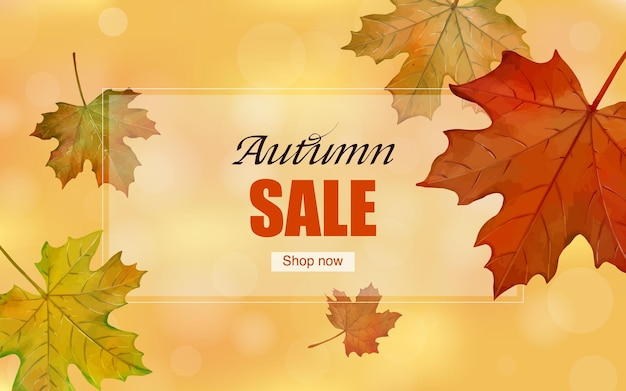 Autumn maple leaves web banner background template vector illustration