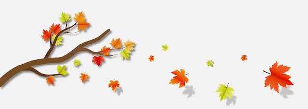 Autumn maple leaves with branch