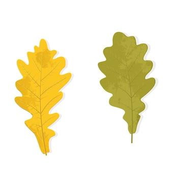 白い背景の上に分離された秋のオークの葉。黄色と濃い緑色