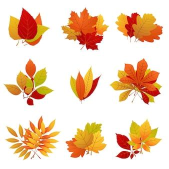 가을 주황색과 노란색 세트. 무료 벡터
