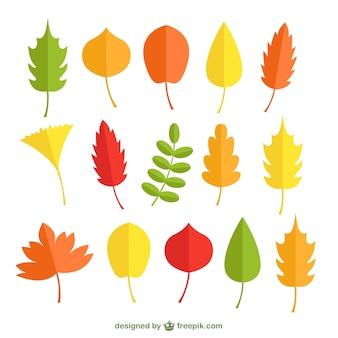 Autumn orange leaves pack