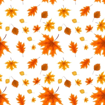Autumn orange and red fallen leaves. seamless pattern. vector illustration. eps10