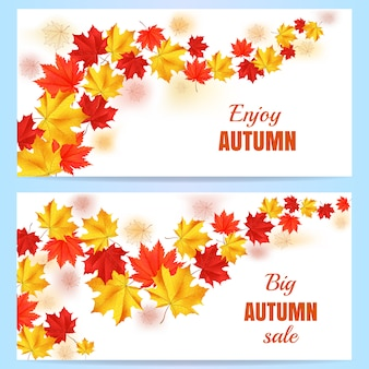 Autumn orange, red, yellow maple leaves in curved line on white background.
