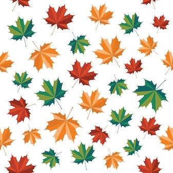 Autumn patter