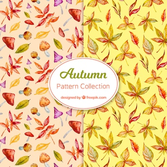 Autumn pattern collection in watercolor style