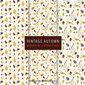 Autumn pattern collection with lovely style