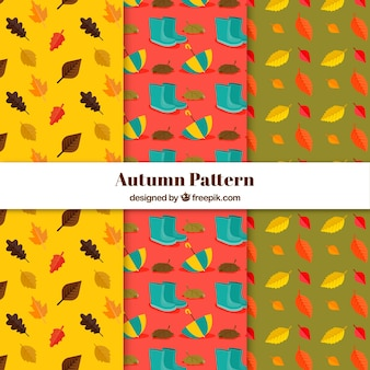 Autumn patterns collection with cute elements free vector