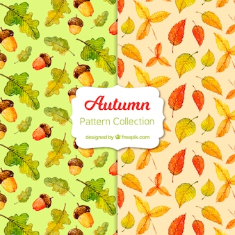 Autumn patterns collection with elements free vector
