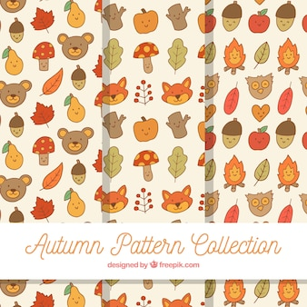 Autumn patterns collection with elements