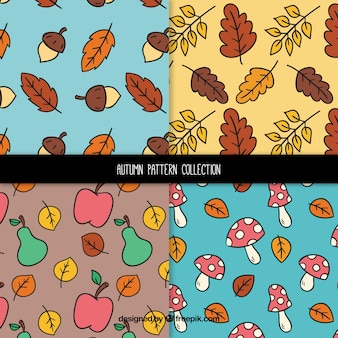 Autumn patterns collection with leaves and fruits