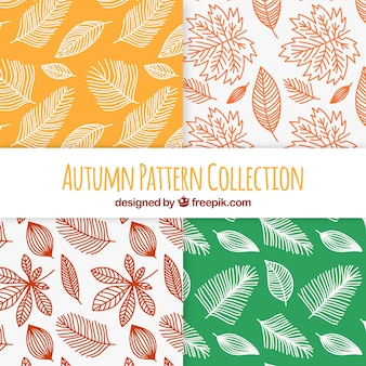 Autumn patterns collection with leaves