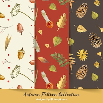 Autumn patterns collection with nature