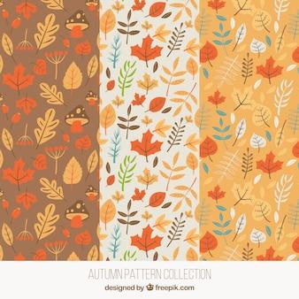 Осенние узоры с листьями и грибами