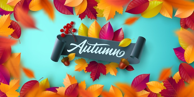 화려한 단풍, 오크 단풍 가을 포스터 및 배너 템플릿.