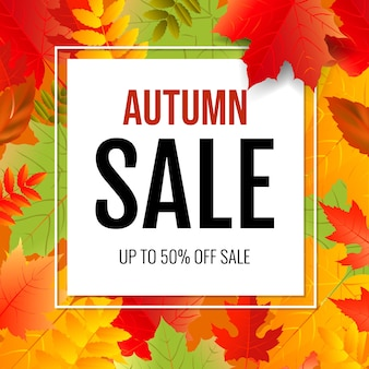 Autumn poster with colorful leaves with gradient mesh,  illustration