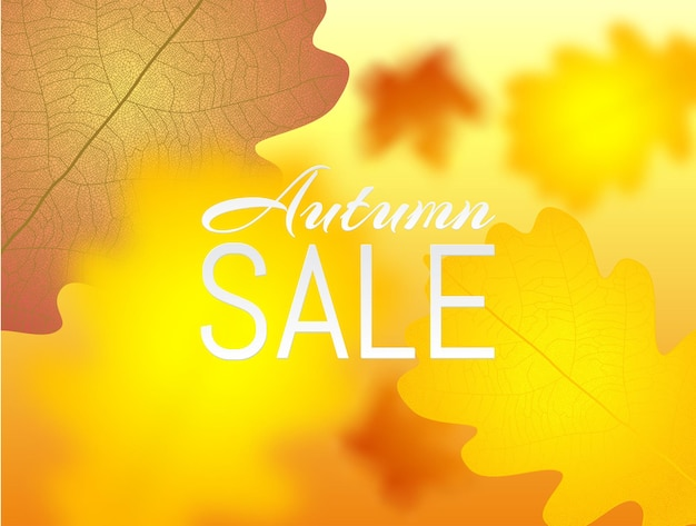 Autumn poster yellow autumn maple and oak falling leaves banner autumn sale blured template