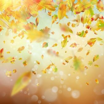 Autumn rainy colorful blur bokeh background.