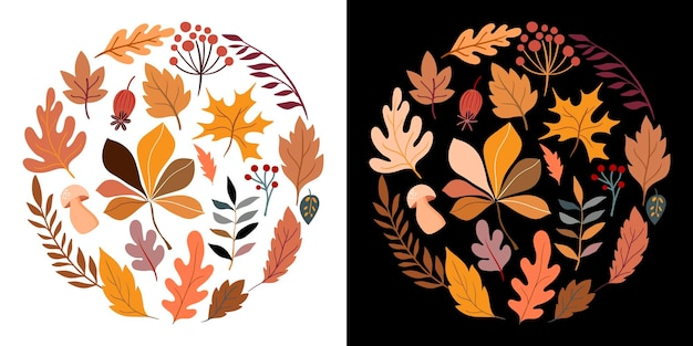 Autumn round composition with different leaves and plants two different backgrounds