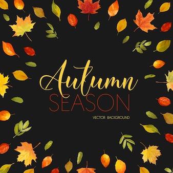 Осенняя рябина берри фон